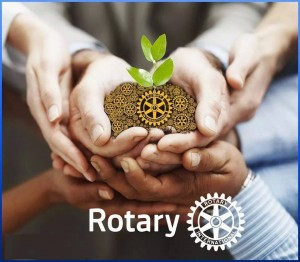Rotary Hands, Seeds, Helping